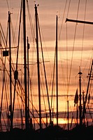 Yacht masts in the sunset at a yacht marina at Eastney, Portsmouth, Hampshire, England