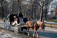 Horsedrawn carriage in Central Park, New York City.