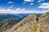 Hiker on the ridge from the Ultener Hochwart to Schoengrubspitz Mountain, Ultental, Ulten Valley, looking towards Schoengrubspitz Mountain, Ulten in s...