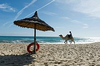 North Africa, Tunisia, Cape Bon, Hammamet. Camel for tourists walking on the beach.