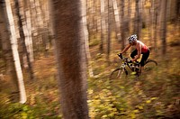 Blurred view of mountain biker in forest
