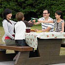 Multi_ethnic family eating at picnic table