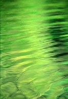 Green reflection on river, nature stock