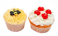 Variety of vanilla cupcakes with various decorations on white background