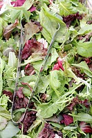 A bin of fresh mesclun salad mix for sale at an outdoor market.