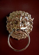 Chinese lion door decoration
