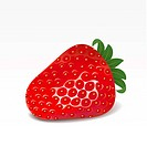 Strawberry on a white background. Mesh.