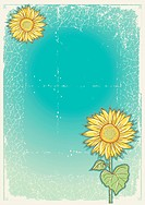 Sunflowers .Vector vintage postcard with grunge elements