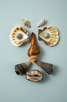 Seashells arranged into a face (thumbnail)