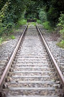 Railroad tracks in a wooded area