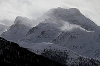 Snow_capped mountain range and forest