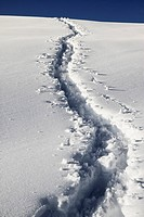 Human trail on snow (thumbnail)