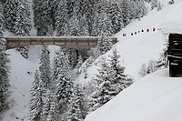 Group of people about to cross bridge (thumbnail)