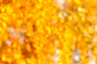 Fall bokeh background of autumn leaves in out_of_focus bokeh at apperture Useful for photomontage