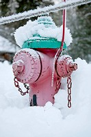 A fire hydrant in snow