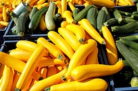 Many yellow and green squash for sale at an outside farm fresh market.