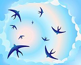 vector illustration of swallows circling in a blue and pink evening sky in eps 10 format with gradients