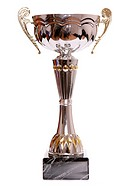 Silver trophy on white background