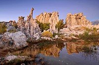 Dawn, sunrise, tufa rocks, tufa formations, South Tufa Area, Mono Lake, saline lake, Mono Basin and Range Region, Sierra Nevada, California, United St...