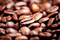 Close up of fresh coffee beans, selective focus