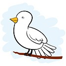 Cute white dove cartoon character sitting on a branch looking upwards