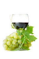 Red wine glass and grapes. Isolated on white background