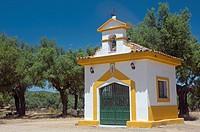 Recreational area ´Las Tres Encinas´-hermitage, Cala, Huelva-province, Spain,