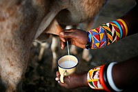Ngoiroro is a village of 200 inhabitants, all belonging to the Massai Tribe The village lays right in the rift valley, south of Nairobi against the ta...