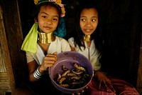 Two Longneck girls display a bowl of worms Approximately 300 Burmese refugees in Thailand are members of the indigenous group known as the Longnecks T...