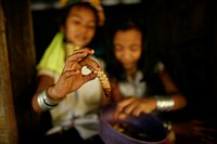 Closeup of a worm held by a Longneck girl Approximately 300 Burmese refugees in Thailand are members of the indigenous group known as the Longnecks Th...
