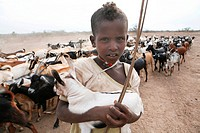 Ethiopian people living in the North of the country are related to Somali people They are nomadic and live from cattle farming Most of them however, l...