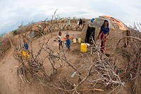 The Afari Northern Etiopie were originally nomads and live in very primitive huts made of straw, twigs and a piece of plastic living conditions are ha...