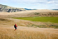 The BC grasslands in the Chilcotin region of British Columbia Canada