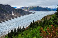 An autumn landscape image of the winding south west arm of the Salmon Glacier located near the town of Stewart in northern British Columbia Canada wit...