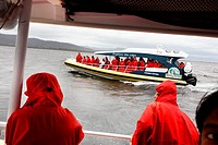 High speed boat cruise near Bruny Island with Pennicot Wilderness Journeys  Tasmania, Australia
