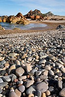 Rocky shore along the Tarkine coastline  North West Tasmania, Australia