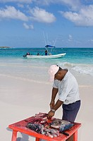 Fisherman cleans catch on beach, Akumal, Quintana Roo, Mexico