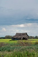 An abandoned house in a field