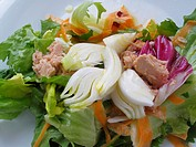 Vegetables with tuna salad