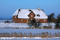 Traditional Frisian thatched house in the snow in winter, Nordfriesland / North Frisia, Germany