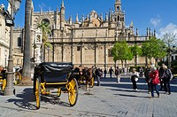 Seville Cathedral area with horse cars, Andalusia, Spain, Europe