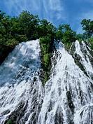 Oshinkoshin Falls