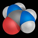 Urea, molecular model. Organic compound playing an important role in the metabolism of nitrogen_containing compounds. Atoms are represented as spheres...