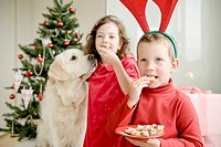 A girl and a boy wearing moose antlers eating Christmas cookies in front of a Christmas tree, a Golden Retriever sitting next to them