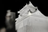 Sapporo Snow Festival Site