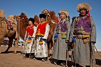 Bactrian camels, Grand Parade, ' festival of a thousand camels' Bulgan, winter in Gobi desert, Mongolia