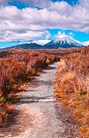 Mt Ngaurohoe in Tongariro National Park, New Zealand. Iconic snow_capped mountain was used in the Lord of the Rings movies and is better known as Moun...