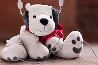 White teddy bear listening to music with headphones