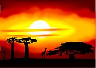 Abstract illustration of the sunset in Africa
