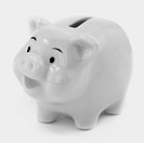 Pink Piggy Bank. White background